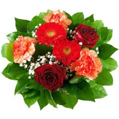 Send bouquet of roses and carnations to Sofia