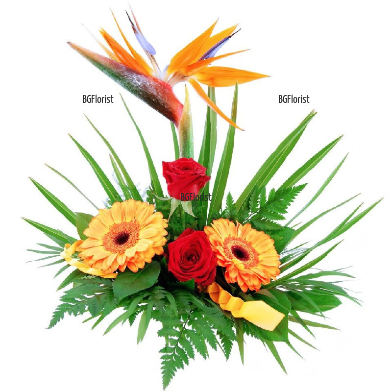 Доставка на аранжировка от стрелиция и цветя в София