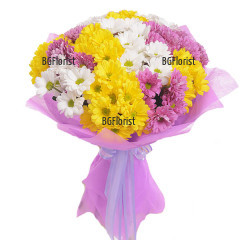 Bouquet of multicoloured chrysanthemums to Sofia.