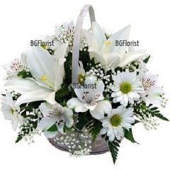 White Embrace - Send basket with white flowers to Sofia