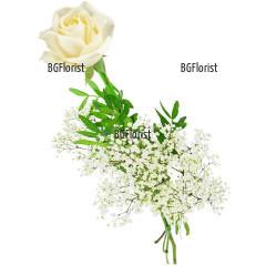 Доставка на една бяла роза с куриер в София