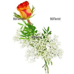 Доставка на една оранжева роза и зеленина