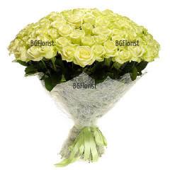 Доставка на 101 бели рози с куриер в София