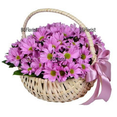 Доставка на красива кошница с розови хризантеми