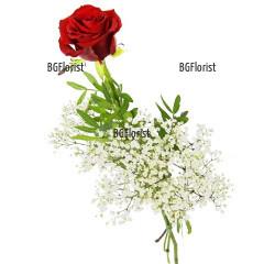 Доставка на една червена роза в София