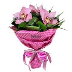 Order online bouquet of orchids to Sofia